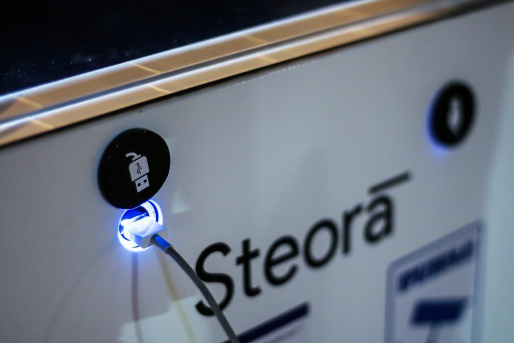 Steora_3